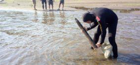 palombari comsubin artificieri al lavoro su residuati bellici (foto Marina Militare)
