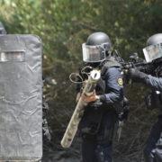 Gis dei Carabinieri (Foto Stato Maggiore Difesa)